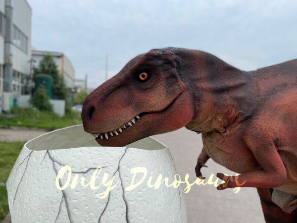 Lifelike-Hidden-Legs-T-Rex-Dinosaur-Costume-for-Sale4