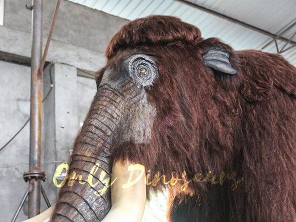 Lifelike-Robotic-Prehistoric-Mammoth-Animal-Statue-for-Show2