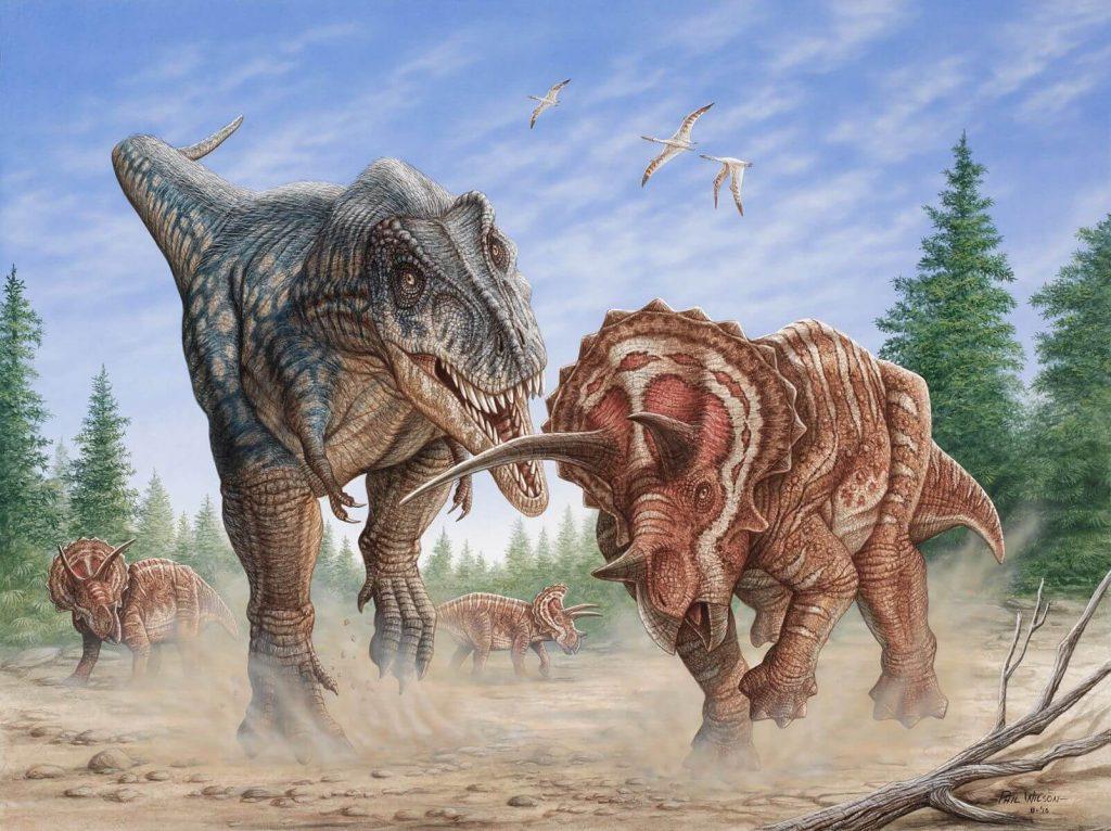 Paleontology-for-Kids_-OLogy-_-AMNH