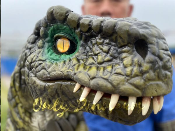 Stunning-T-Rex-Dinosaur-Hand-Puppet5