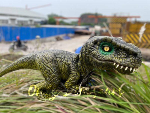 Stunning-T-Rex-Dinosaur-Hand-Puppet6
