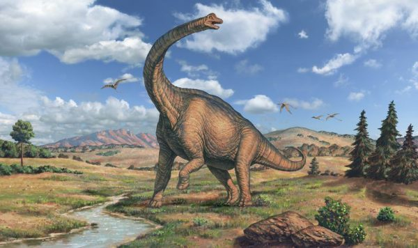 Top-15-Biggest-Dinosaurs-That-Have-Been-Discovered-1