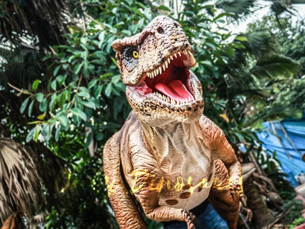 Top-8-Great-Dinosaur-Water-Parks-You-Cant-Miss-This-Summer-2021-Animatronic-T-Rex-Costume-For-Performance