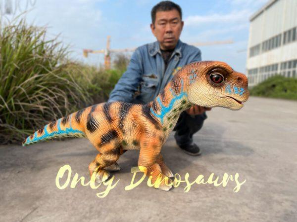Uplifting-Baby-Brachiosaurus-Hand-Puppet4-1