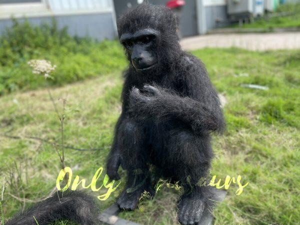 Vivid-Animatronic-Monkey-Animal-Models-for-Exhibition5