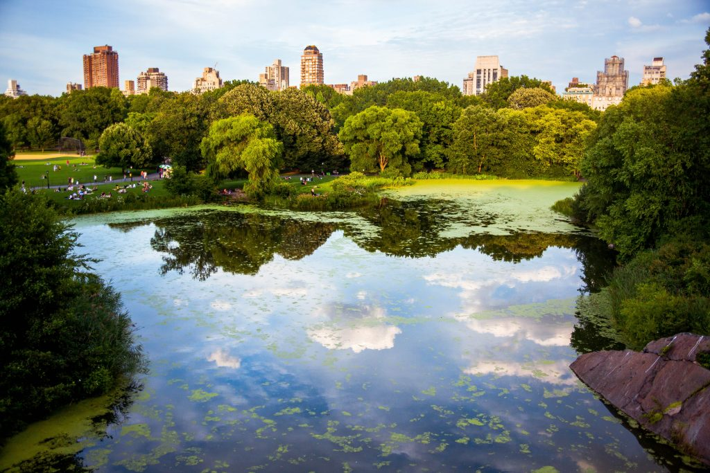 18-Best-Places-to-Travel-in-July-Destinations-in-the-U.S.-Park-Pool