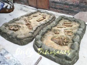 Dinosaur Fossil Dig Prop for Kids
