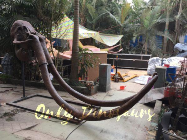 Fiberglass-Mammoth-Skull-for-Sale3