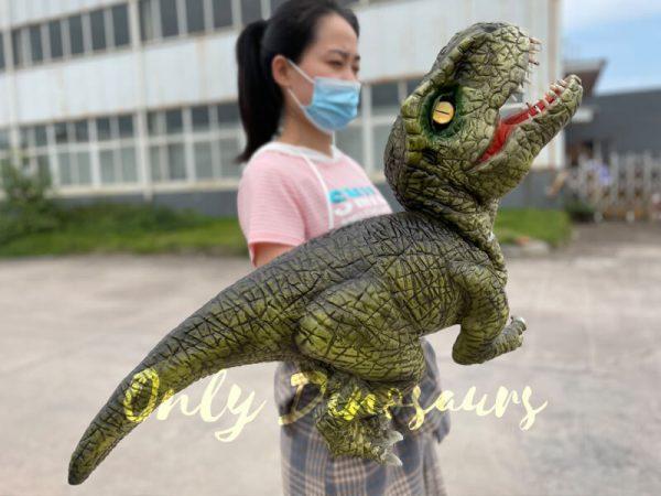 Lifelike-Baby-T-Rex-Dino-Hand-Puppet4