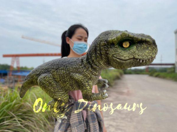Lifelike-Baby-T-Rex-Dino-Hand-Puppet6