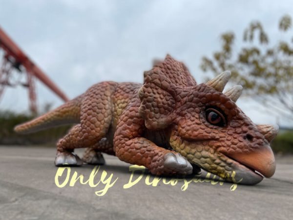 Lifelike-Dino-Triceratops-False-Arm-Puppet3