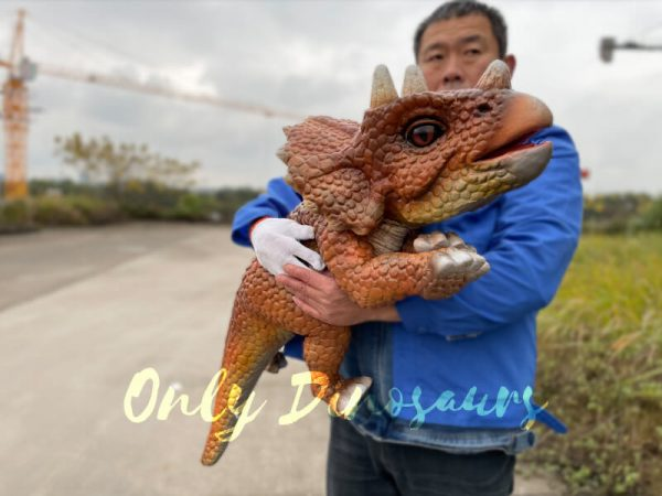 Lifelike-Dino-Triceratops-False-Arm-Puppet5