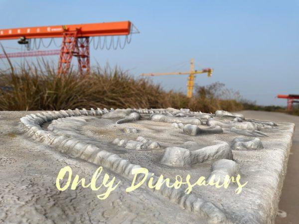 Lifelike-Dinosaur-Skeleton-Fossil-Dig-Prop2