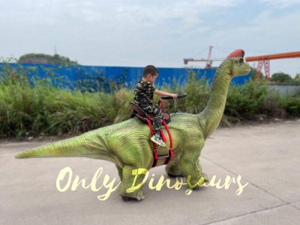 Outdoor-Walking-Brachiosaurus-Dino-Ride3