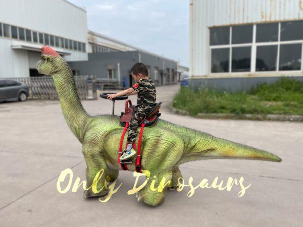 Outdoor-Walking-Brachiosaurus-Dino-Ride5