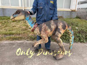 Portable Weewarrasaurus Dino Puppet for Sale