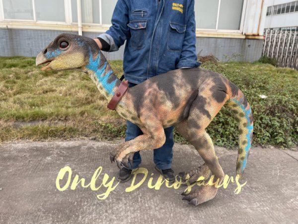 Portable-Weewarrasaurus-Dino-Puppet-for-Sale1