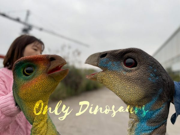 Portable-Weewarrasaurus-Dino-Puppet-for-Sale3