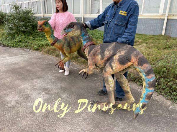 Portable-Weewarrasaurus-Dino-Puppet-for-Sale4