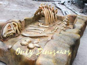 Realistic Dino Fossil Dig Replica