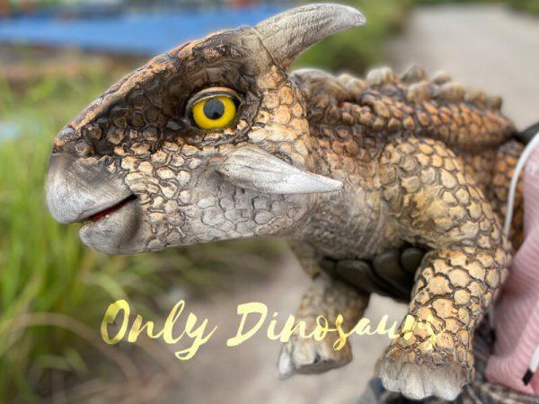 Realistic-Dinosaur-Baby-Ankylosaur-False-Arm-Puppet6