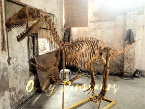 Realistic Dinosaur Skeleton for Museum