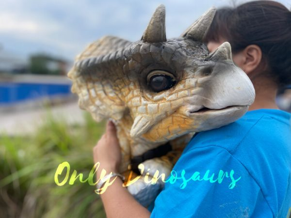 Realistic-False-Arm-Baby-Triceratops-Dino-Puppet1