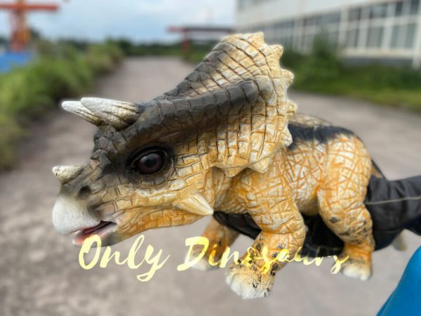 Realistic-False-Arm-Baby-Triceratops-Dino-Puppet3