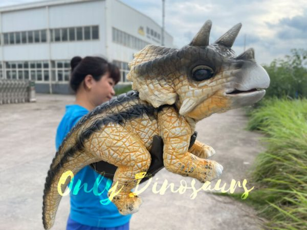 Realistic-False-Arm-Baby-Triceratops-Dino-Puppet6