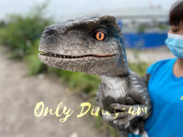 Realistic-False-Arm-Raptor-Dino-Puppet1