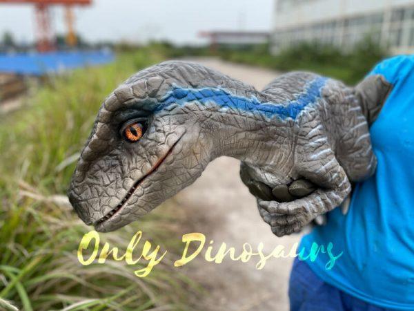 Realistic-False-Arm-Raptor-Dino-Puppet3