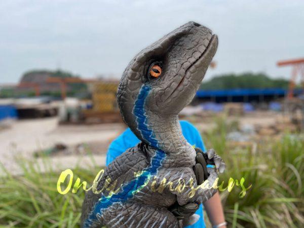 Realistic-False-Arm-Raptor-Dino-Puppet6