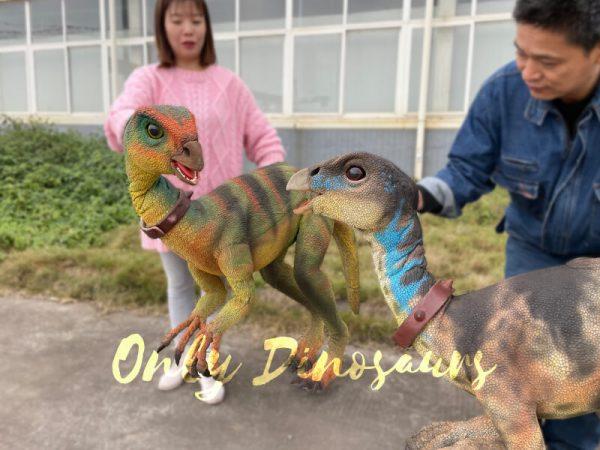 Realistic-Quantasaurus-Portable-Dinosaur-Puppet4