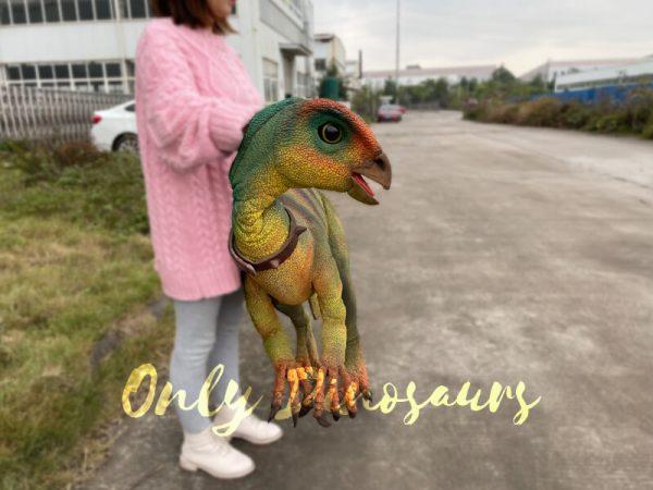 Realistic-Quantasaurus-Portable-Dinosaur-Puppet5