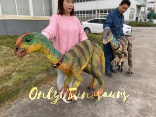 Realistic-Quantasaurus-Portable-Dinosaur-Puppet6