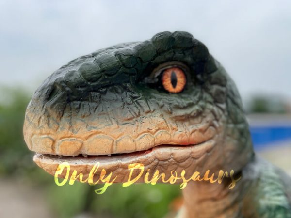 Realistic-Raptor-Dinosaur-Hand-Puppet-for-Kids1