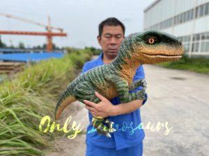 Realistic Raptor Dinosaur Hand Puppet for Kids