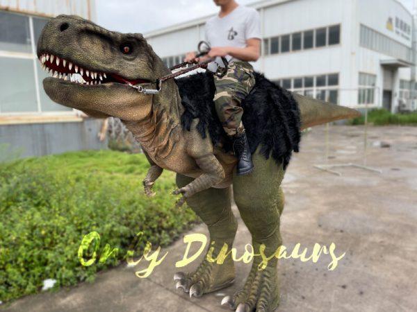Realistic-T-Rex-Stilts-Walking-Dino-Costume2