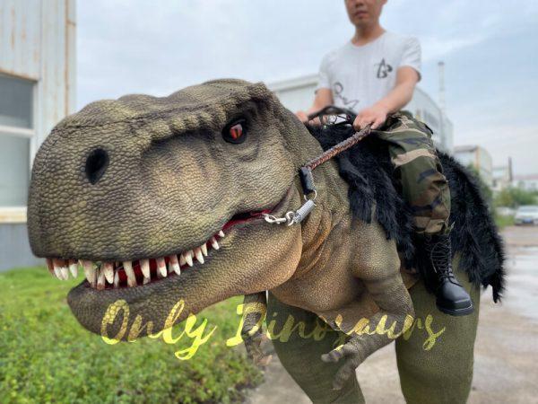Realistic-T-Rex-Stilts-Walking-Dino-Costume5