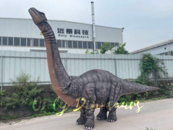 Realistic-Two-person-Brontosaurus-Dinosaur-Costume5
