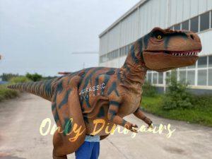 Realistic Walking Dinosaur T-Rex Visible Legs Costume