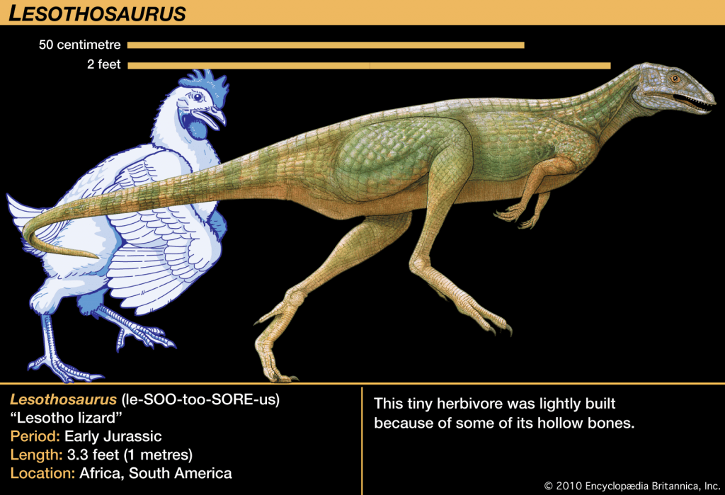 Top-15-Friendliest-Dinosaurs-Ever-Lesothaurus