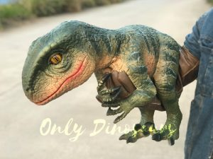 Velociraptor Dino Hand Puppet for Stage Show