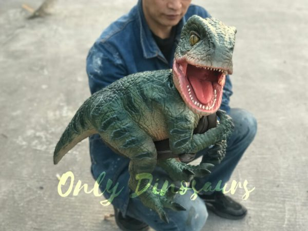 Velociraptor-Dino-Hand-Puppet-for-Stage-Show3