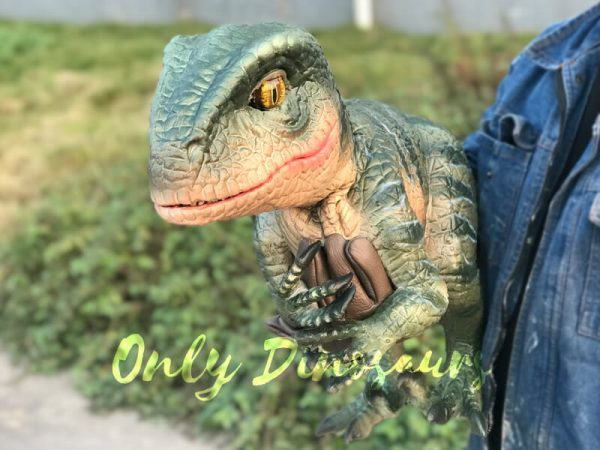 Velociraptor-Dino-Hand-Puppet-for-Stage-Show4