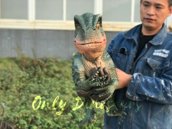 Velociraptor-Dino-Hand-Puppet-for-Stage-Show5
