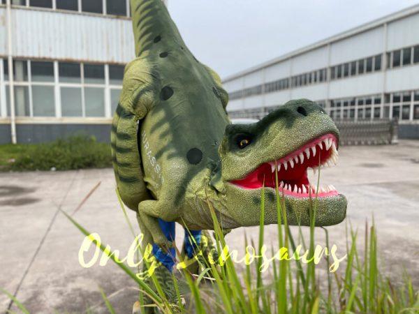 Vivid-T-Rex-Visible-Legs-Dinosaur-Costume1