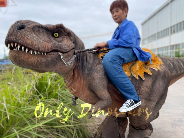 Wonderful-T-Rex-Stilts-Dinosaur-Costume-for-Sale4