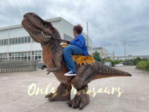 Wonderful T-Rex Stilts Dinosaur Costume for Sale