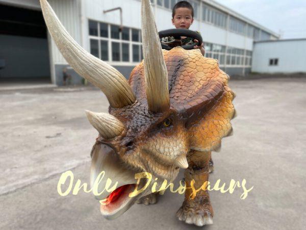 Wonderful-Walking-Dinosaur-Triceratops-Kids-Ride4